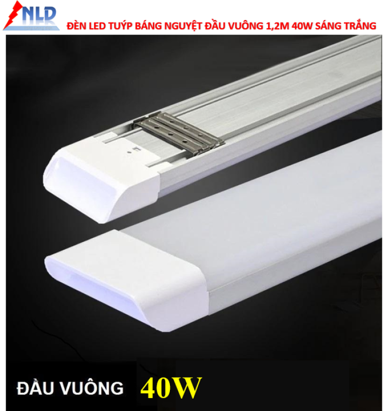 Bộ 2 đèn led Tuýp bán nguyệt đầu vuông 40w-1.2m Sáng trắng