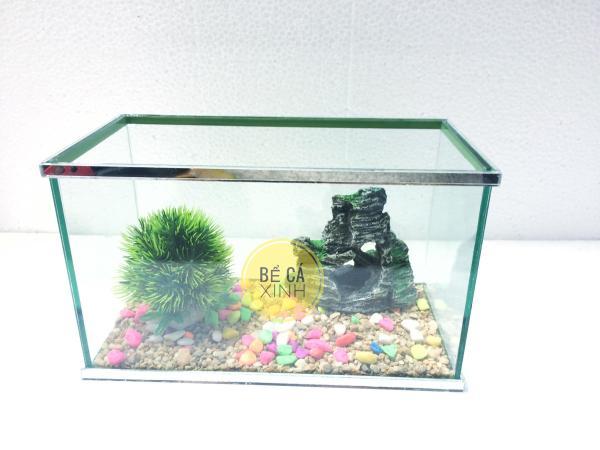 Bể cá mini 25x13x15cm có dán viền gương sang trọng ( tặng sỏi nền và thức ăn ) - bể cá để bàn , trang trí nhà cửa