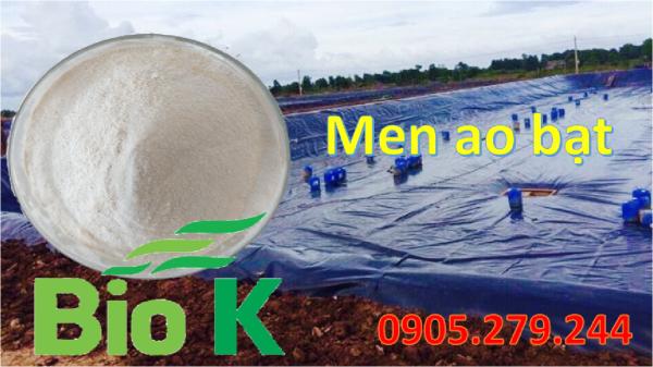 Men xử lý ao bạt BioK