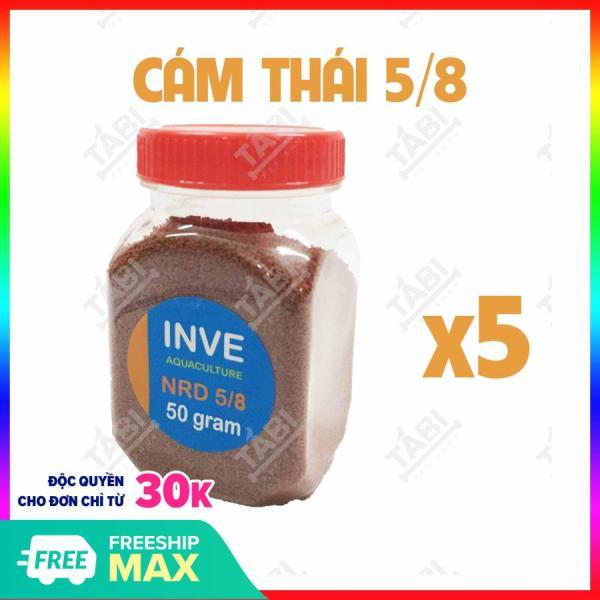 COMBO 5 Hủ 50g Thức Ăn Cá Cám Thái Inve 5/8 Cho Cá Beta, Guppy, Vàng,...