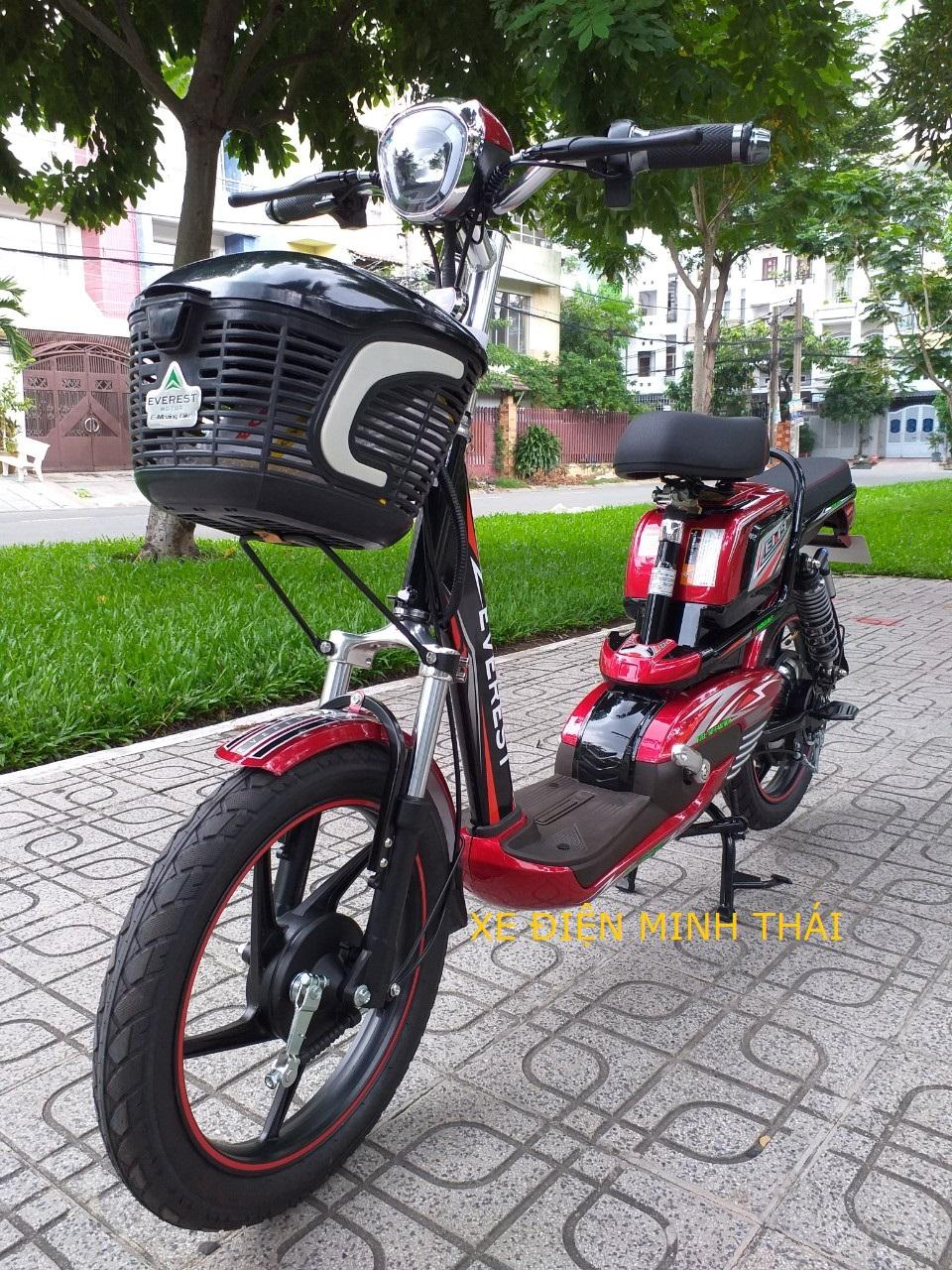 Mua xe đạp điện hiệu everest mẫu EM9 giá tốt- xe điện everest- xe máy điện everest mẫu mới