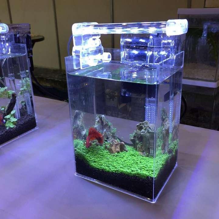 Bể cá cảnh thủy sinh nên lắp đèn LED bể cá D20, trang trí bể cá cảnh, mẫu đèn bể ca cảnh đẹp - Thiết bị trang trí bể cá cảnh chính hãng XILONG