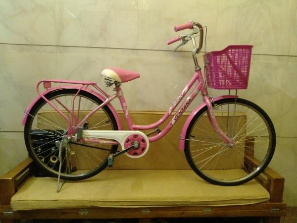Mua Xe đạp nữ cỡ vành 24 inch phù hợp cho học sinh nữ 10-15 tuổi