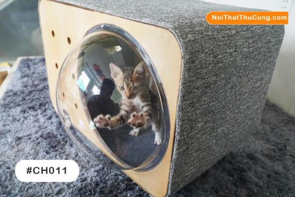 Nhà Beta Độc Đáo Cho Mèo  Phi Hành Gia  CH011