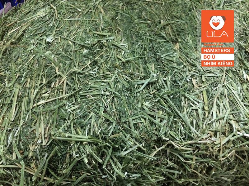 3kg cỏ Alfafa ( Cỏ Linh Lăng) khô