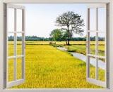 Mua Tranh Dan Tường Cửa Sổ 3D Cảnh Đồng Lua Vtc Vt0088 Rẻ