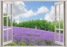 Cửa Hàng Tranh Dan Tường Cửa Sổ 3D Cảnh Vườn Hoa Vtc Vt0178 Hồ Chí Minh