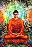 Bán Tranh Dan Tường Vtc Bổn Sư Thich Ca Mau Ni Phật 1 Kt 80 X 120 Cm Rẻ Hồ Chí Minh
