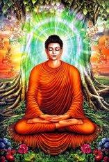 Chiết Khấu Tranh Dan Tường Vtc Bổn Sư Thich Ca Mau Ni Phật 1 Kt 80 X 120 Cm Vtc Hồ Chí Minh