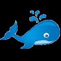Nước rửa kính ôtô Blue Whale