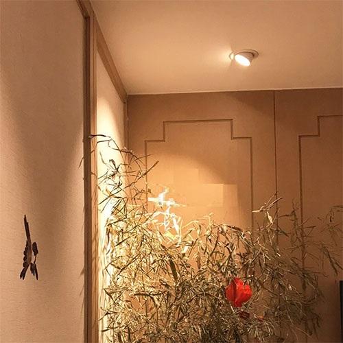 Đèn âm trần xoay góc ứng dụng trang trí phòng trưng bày